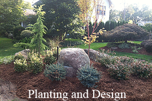 Planting and Design